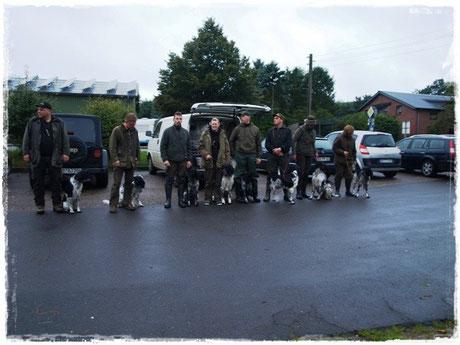 von links: Imco vom Grenzland, Asmus, Asta, Arven, Ajuna, Ayla, Alva und Alwin