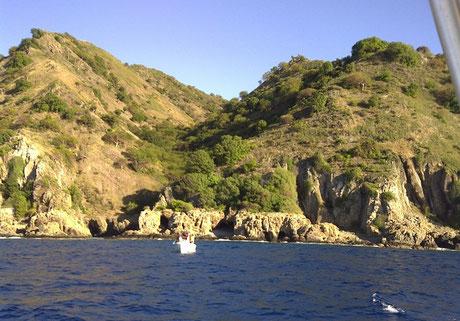 desecheo, island, puerto rico
