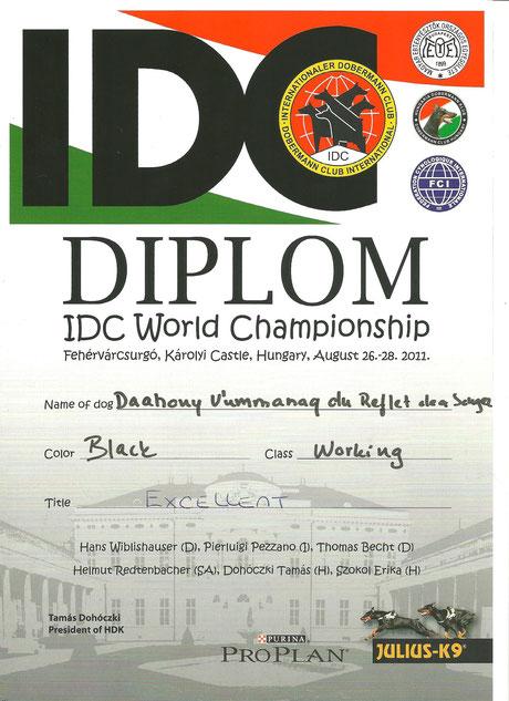 Titre Excellent - IDC HONGRIE - 2011