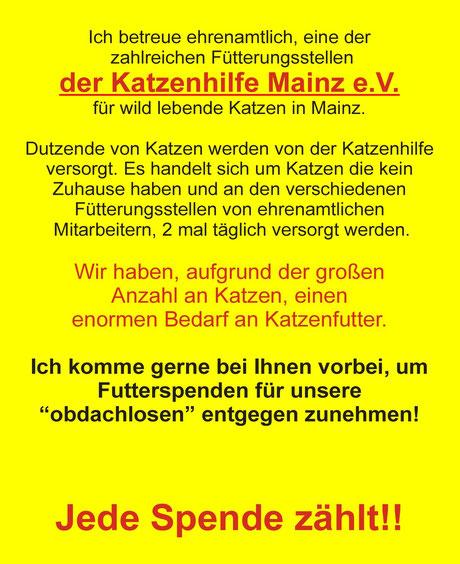 Katzensitter, Katzenbetreuung, Tierbetreuung Lorenz Noll Mainz
