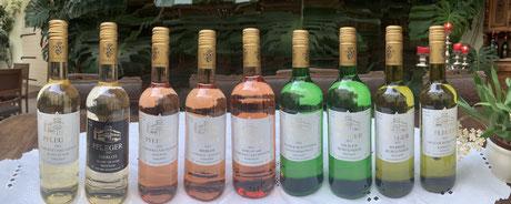 Weinssortiment Weingut Werner Pfleger, Sorten, Rotweine, Weissweine, Roséweine, Sekt- und Secco