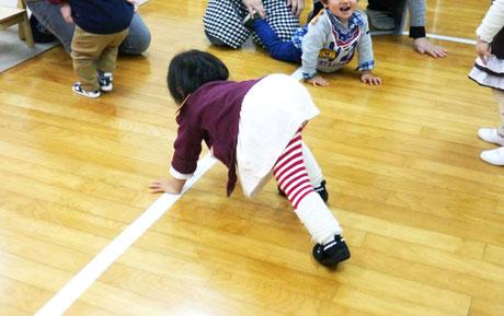 レッスンで、1歳児(親子ステッラコース)が、膝をしっかり伸ばしてお尻を上げて、4つばいでクマさん歩きをしています。