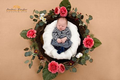 Neugeborenenfotografie-Babyshooting.jpg