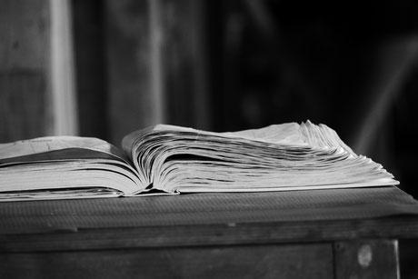 Ein Buch gefüllt mit Lebensweisheiten und Erlebnissen machen es nach Jahren sehr interessant.