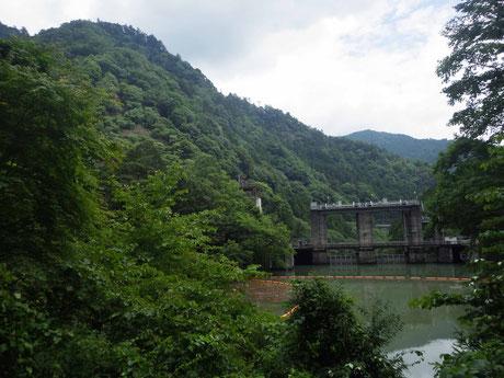 遊歩道から見た白丸ダム堰堤