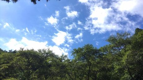 明ヶ島キャンプ場で写真2