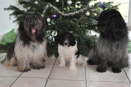drei Weihnachtsengel...