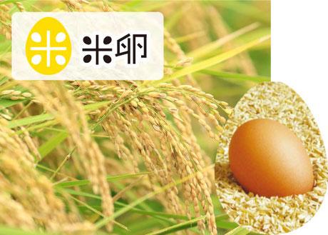 イメージ画像:米卵