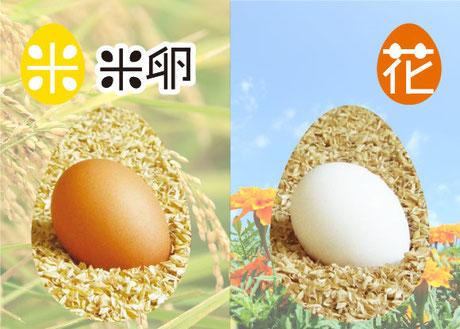 リンク画像:「米」「花」育ちの卵について