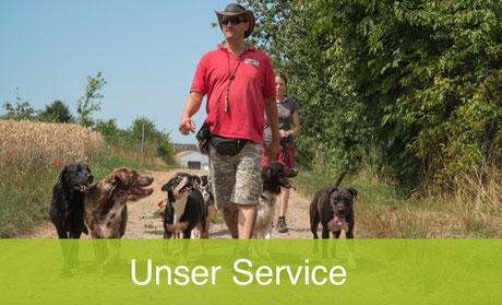 Service bei Franks Hundeherberge