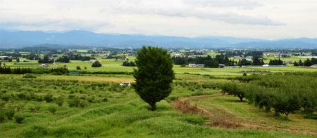 8月27日撮影。北上に行く途中、ラ・フランス温泉館近くの「紫波農園」より。