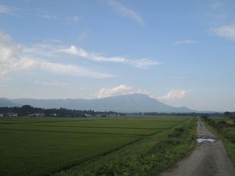 田んぼ、土手、空、雲、岩手山