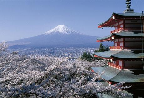 Vue sur le Mont Fuji. Source:https://www.fernost-entdecken.de/reisedetails/Japan_-_Land_der_Kontraste_2017_4791.php