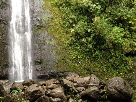 manoa-falls-oahu