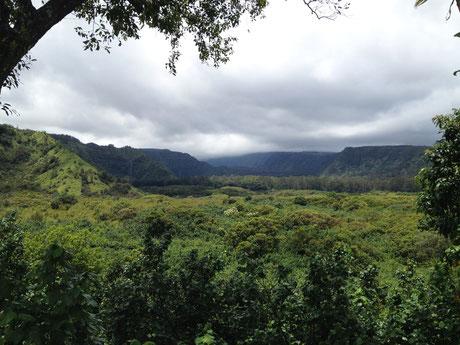 wailua-valley-state-wayside-maui