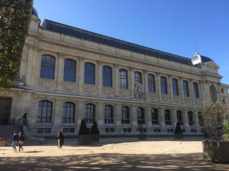 Grande Galerie Evolution Paris