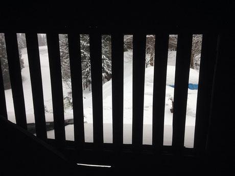 子供室のロフトの窓になる予定の窓からの景色。