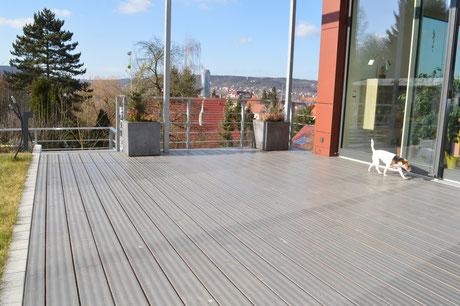 Holzart: Terrassendiele Douglasie