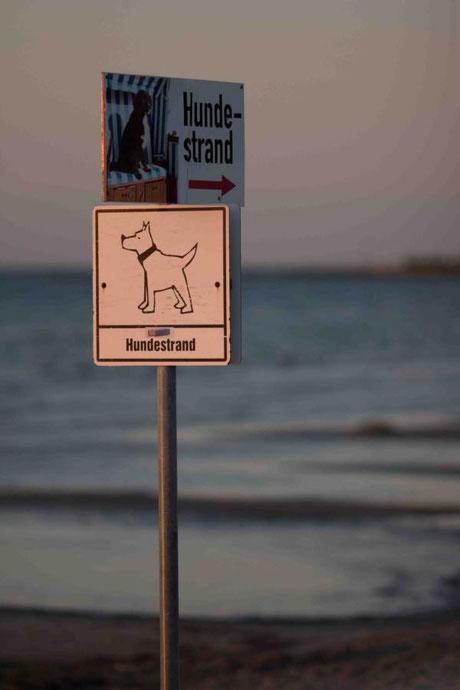 ... ein Hundestrand ausgewiesen. Morgens war nichts los ....