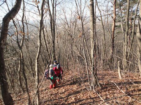 2015.12.24  山頂へ至る登山道も小春日和