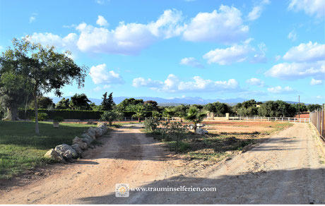 Finca as horseranch near to Palma de Mallorca