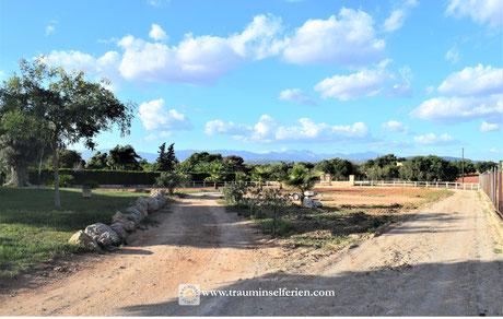 Finca und Pferderanch in Mallorcas Süden
