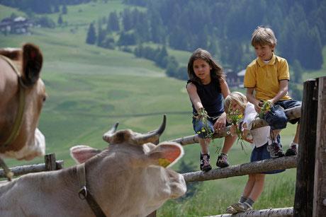 Kinderprogramm im Sommer am Reschenpass im Vinschgau, Südtirol bei Nauders: Urlaub mit Kindern