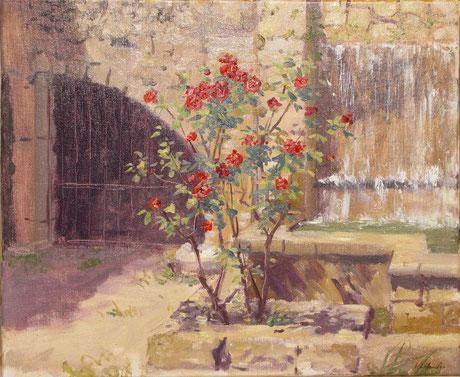 Les roses et les fontaines cascades du quartier du Réal à Barjols.