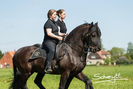 Für die Quadrille sind die Reiterinnen und Pferde
