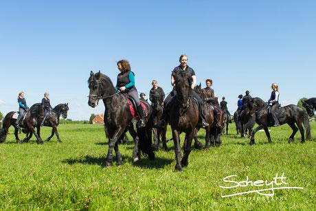 Eine Quadrille mit so vielen Pferden zu gestalten
