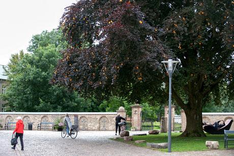 Projekt im öffentlichen Raum (Foto Niels Linneber)