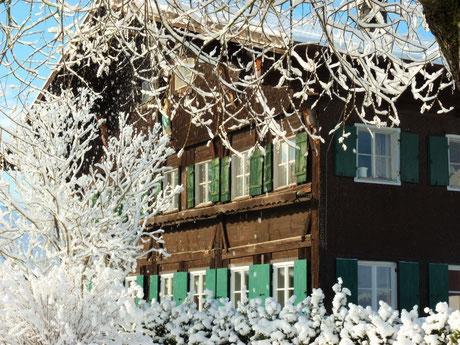 Ferienwohnung im Allgäu, Rosenhof in Görisried, Außenansicht mit schneebedeckten Bäumen