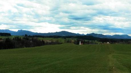 Ferienwohnung im Allgäu, Rosenhof in Görisried, saftige grüne Wiese in der Nähe der Ferienwohnung Rosenhof