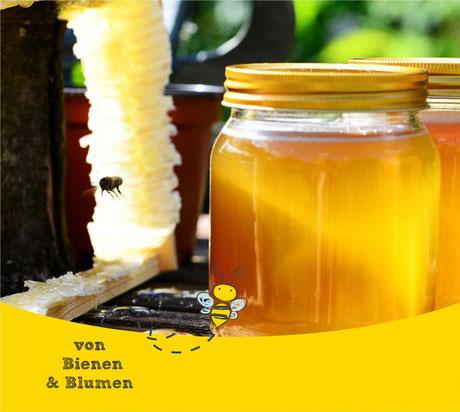 Honig - Rheine  -  süße Energie - Von Bienen und Blumen - Bärbel Bröskamp - Bienenheilkunde - Apitherapie