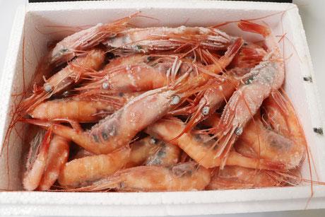 水産加工品(甘海老)のネット通販は福井県の真洋水産で