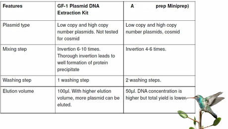 plasmid dna extraction, Aufreinigung von plasmid DNA
