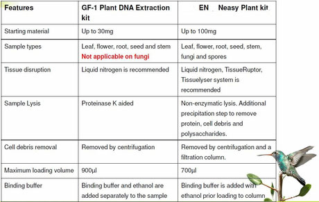 DNA Extraktion aus Pflanzen; Miniprepkit
