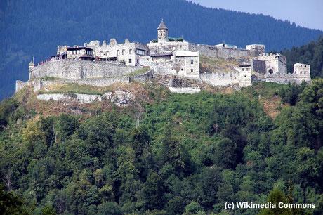 Freitag: Auf der Rückreise nach Wien machen wir an der Burg Landskron halt und nehmen an einer Führung am Affenberg und einer Adlerflugschau teil.