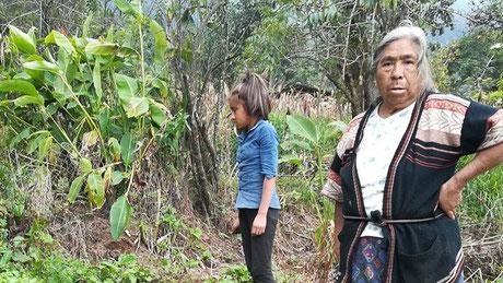 In Guatemala werden indigene Maya Frauen seit Jahrhundereten unterdrückt. Sie sollen lernen sich für die eigenen Rechte einzusetzen und Selbstwertgefühl zu entwickeln.
