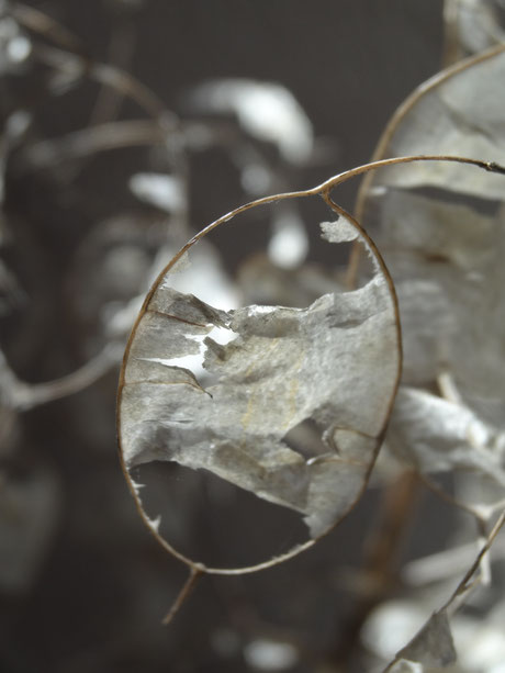 Silberspiegel