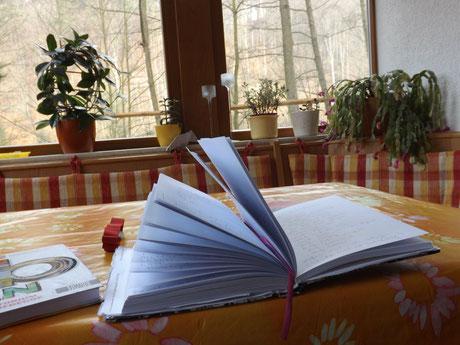 Schreiben in Bad Schandau - Momente des wunderbaren Miniurlaubs aufzeichnen