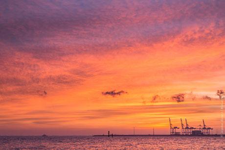 Sonnenaufgang am Jadebusen mit Blick auf die Containerbrücken des Jade-Weser-Ports in Wilhelmshaven