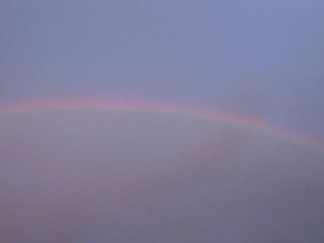 オイルライフ 7/18虹
