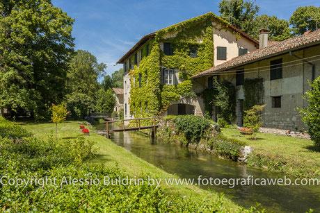 Corgnolo si trova in un territorio ricco di vegetazione e di acque sorgive.