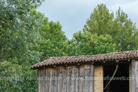 Angoli di Corgnolo che testimoniano la grande presenza di vegetazione in cui è immerso il paese.
