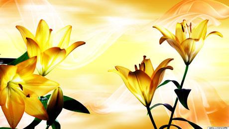 Frauengruppe, Blüten