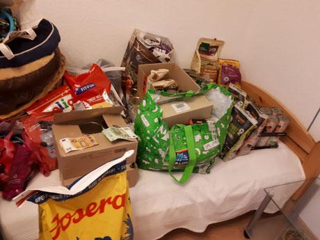 Traditionelle Weihnachts-Spendensammlung aktive Hundezeit, Manuela Eix