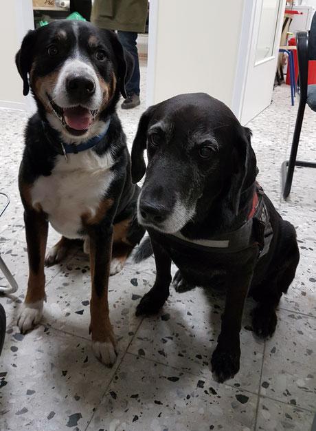 Merlin und Lara, Foto: Oetken