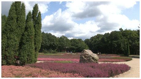 Schneverdingen Heidegarten
