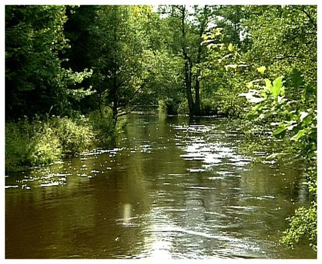 Hermannsburg Oertzefluss